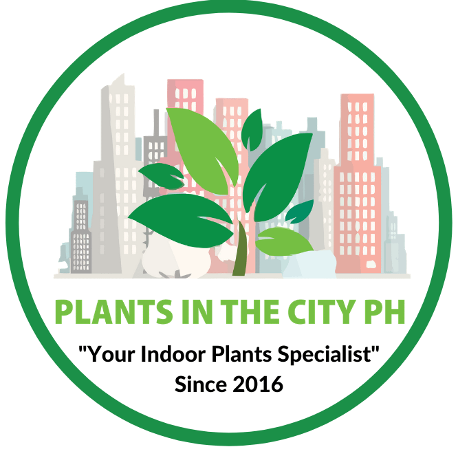 plants in the city logo